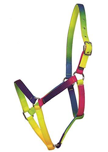 Amesbichler Cabezada para Caballos, diseño de arcoíris, cabezada para Caballos llamativos Ajustable Cuello de Neon Colores Vivos, Unidades