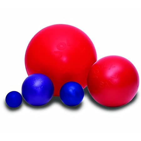 Jolly Pets Push-n-Play Ball Hundespielzeug