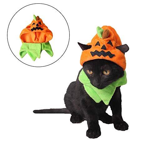 RENS Halloween Cute Pet Kürbis Hüte, Carnival Pet Festival Kostüme, Trick or Treat Hüte Anzug für Hunde (Trick Oder Behandeln Kostüm)