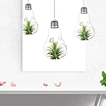 KNIKGLASS Set of 3 hanging Glass vase, Light Bulb Glass Terrarium, Air Plant Pot Hydroponic Container Planter for Home Office Indoor Decor (with 2 Holes)