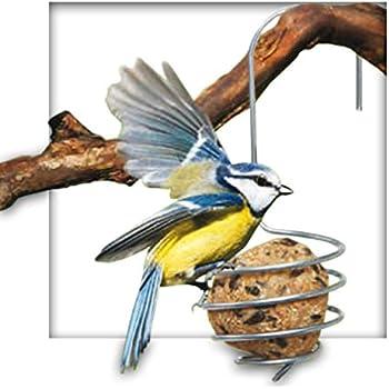 Meisenknödelhalter Meisenknödel Mahlzeit Futterstelle Knödelhalter Vogelfutter