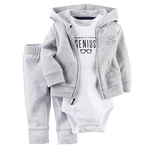 Huateng HT Variedad de Ropa para bebés, niños y niñas, Ropa de Manga Larga, suéter con Capucha, Pantalones de Tres Piezas, Ropa Atractiva (de Tres Piezas)