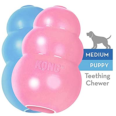 KONG Puppy Medium, Assorted Colors by KONIF