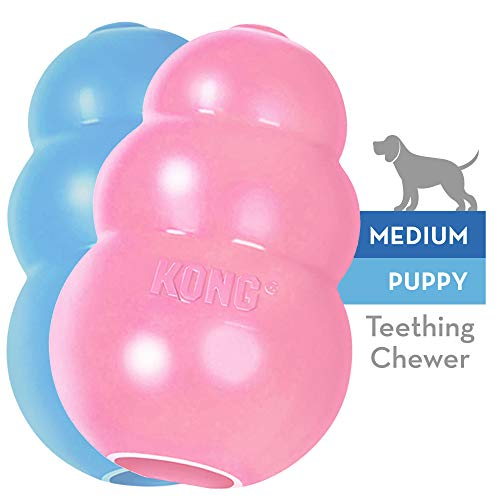 KONG - Puppy Gioco gomma naturale per dentizione - Masticare e riportare - Cuccioli M (vari colori)