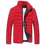 Riou Herren Winterjacke Baumwolle Stehkragen Zipper Warme Winter Dicken Mantel Jacke Übergangsjacke Steppjacke,Männerjacke Daunenjacke Windjacke Für Männer (M, Rot)