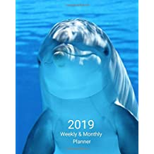 2019 Weekly and Monthly Planner: Blue Dolphin Daily Organizer -To Do -Calendar in Review/Monthly Calendar with U.S. Holidays–Notes Volume 48