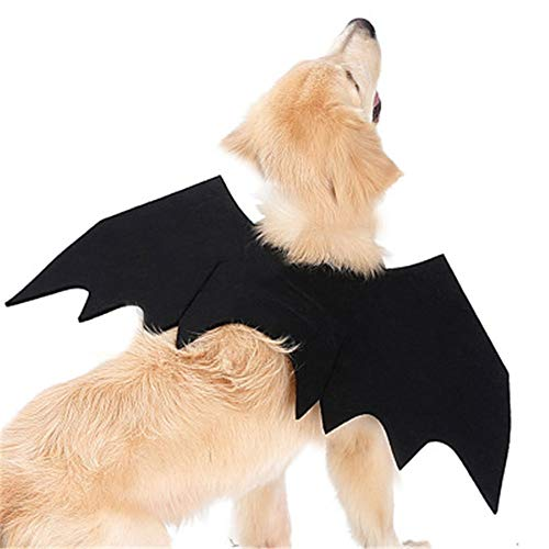 QDZSQFF Katze KostüM Hund Kleidung Haustier KostüM Kleidung Halloween KüRbis Katze Glocke Fledermaus FlüGel Katze Fledermaus KostüM FüR Welpen Katze S (Cat Whiskers Kostüm)