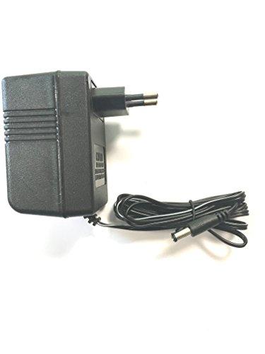 Chargeur voiture électrique enfant et tous véhicules électrique 12V