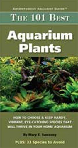 TFH/NYLABONE ATFMC127S Die 101besten Aquarium Pflanzen -
