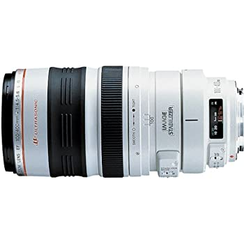 Canon EF 100-400mm f/4.5-5.6L IS USM: Amazon.de: Kamera