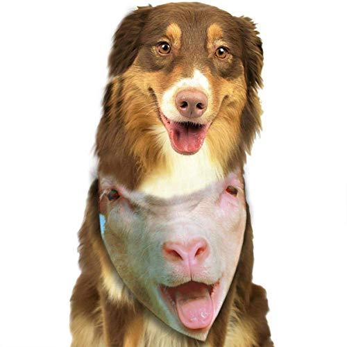 Gxdchfj Sheep Smile Fashion Dog Bandana Pet Accessories Easy Wash (Kindes Sheep Dog Kostüm)