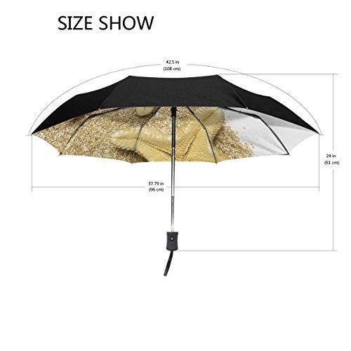 Bennigiry étoile de mer coupe-vent et étanche Voyage Compact Parapluie - Auto ouvrir fermer Parapluie pliable robuste et léger facile à transporter Parasol pour homme femme Taille unique Color#002