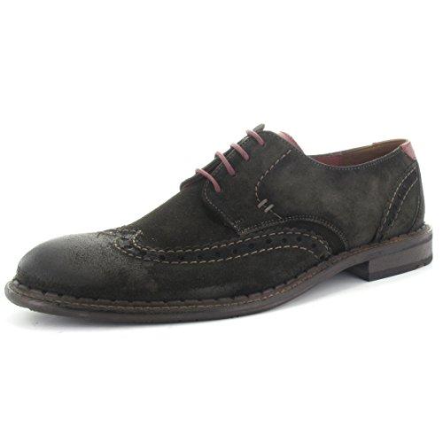 LLOYD , Chaussures à lacets et coupe classique homme sepia/bordo