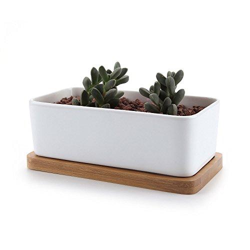 T4U 16.5CM Recheckig Keramik Sukkulenten Töpfe Kaktus Pflanze Töpfe klein Blumentöpfe mit Bambusuntersetzer Weiß