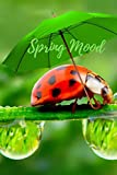 Spring Mood: Ladybug; Spring Notebook for Women, Girls and Stylish Young Students; Happy Easter & Mother's Day; Empty Journal 6 x 9 (110 pages); Bonus ... Planner, Holidays & Observances 2019 in.