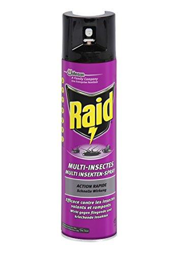Raid Multi Insekten-Spray zum Schutz vor kriechenden und fliegenden Insekten, Schnelle Wirkung nach 5 Minuten, 400 ml