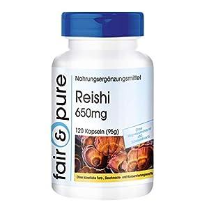 Reishi Kapseln – mit 650mg Reishi Pulver pro Kapsel – Ganoderma lucidum – hochdosiert, natürlich & vegan – ohne Zusatzstoffe – 120 Kapseln