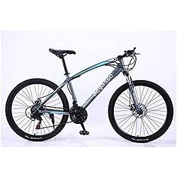 """KXDLR MTB 24 Marchas para Hombre Duro-Cola MTB 26"""" Y Neumáticos De 17 Pulgadas Suspensión Tenedor Capítulo con Bloqueo Mecánico De Bicicletas De Doble Freno De Disco,Gris,30 Speed"""