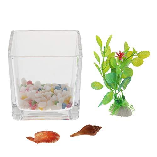 SM SunniMix Klein Aquarium Fischglas Fischbecken für Zierfische Goldfische Bettas
