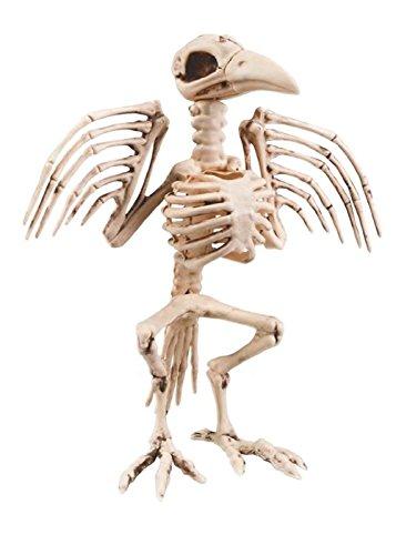 Große Halloween Prop Vogel Crow Skelett
