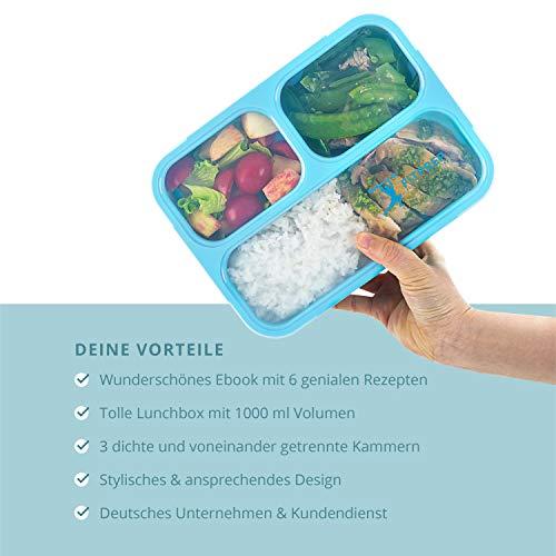 FITPREP Original Lunchbox | 3 Fächer | Auslaufsicher - 4