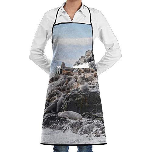 Cute Kostüm Kind Lion - Drempad Premium Unisex Schürzen, Cute Sea Lions On The Rock Men & Women Bib Chef Kitchen Apron with Pockets