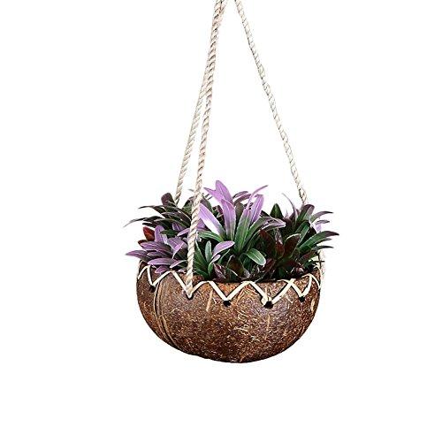 Sunneey Pots à Suspendre, Noix de Coco Shell Plante succulente Mur-Hung Bassin Noix de Coco Shell Suspendu Panier Pot de Fleurs pour Le Mur de Balcon Suspendu décoratif