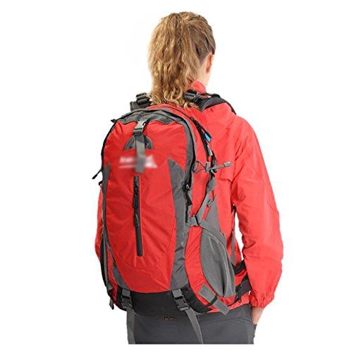 zaino trekking All'aperto viaggio zaino alpinismo Uomini E Donne borsa tracolla Portafoglio sacchetto impermeabile di viaggio dello zaino 40L Zaini da escursionismo ( Colore : B ) B