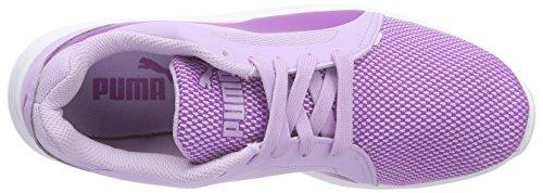 Puma St Trainer Evo Tech, Baskets Basses Mixte Adulte Violet (purple cactus flower-orchid bloom 01)