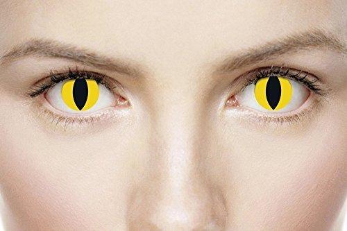 Erwachsene Herren Damen Wild Katze gelb schwarz Halloween Karneval Kosmetikum farbiges Kostüm Schutzbrille Zubehör