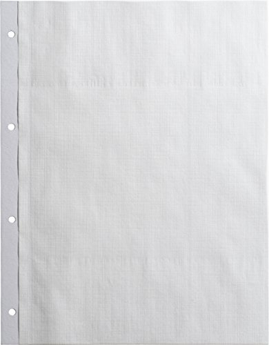 BRUNNEN 1061610 Fotoalbum-Einlegeblatt (23 x 29.7 cm, 10) weiß