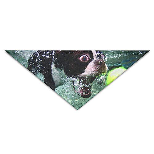 Sdltkhy Lovely Bulldog to Play The Ball in Water Triangle Pet Scarf Dog Bandana Pet Collars Dog Cat - Birthday