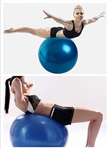 Exercise Ball With – Exercise Balls & Accessories