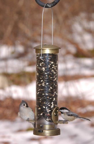 Aspects Petit laiton antique Seed Tube Feeder Quick Clean