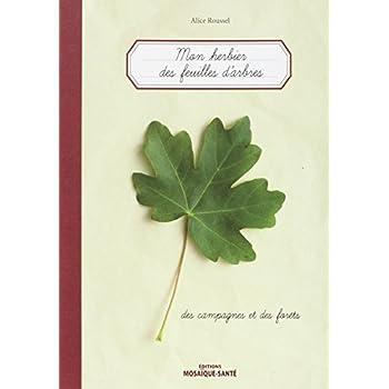 Herbier des feuilles d'arbres... des campagnes et des forêts (Mon)