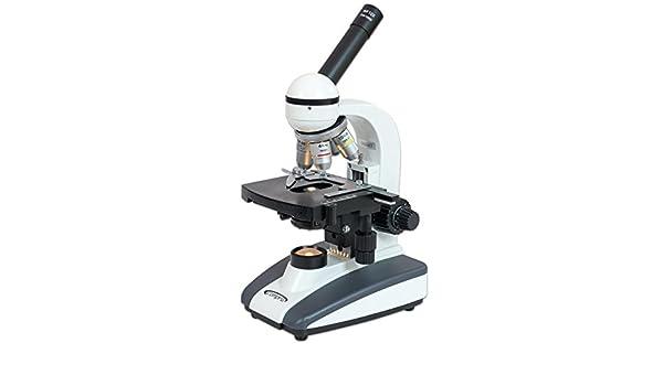 Betzold mikroskop m top durchlicht beleuchtung