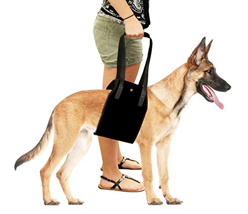 Dog Harness, S7 SEVEN Large Dog Harness Support Sling Helps Dogs With Weak Legs Stand Up, Walk, Climb Stairs & Get into… 2
