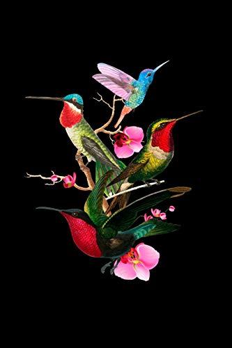 Hummingbird Journal: Tropical pájaro naturaleza fanática colibríes En fuga Vivo Artístico mariposas revista - 120 asistentes 120 reinado asistentes ... menores - agenda Para reinterpretación Mariposa Tiere