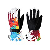 Xueliee Professional Thermal Winter Gloves Waterproof Ski / Snowboard Cool-Resistant Gloves Men and Women