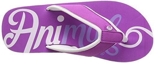 Animal Damen Swish Logo Sandalen, One Size Purple (Orchid Purple)