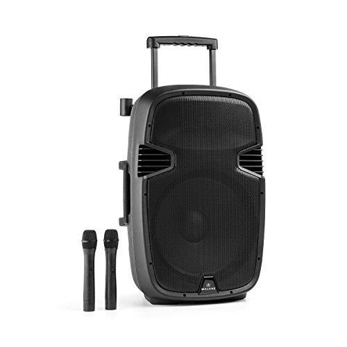 malone-bushfunk-45-altoparlante-attivo-portatile-900-watt-di-potenza-massima-bluetooth-connessioni-u