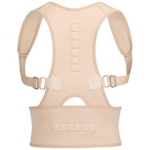Der original Royal Posture Rückenstützgurt aus dem TV - L/XL