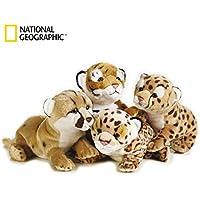 Nacional Geographic 770768, Peluche bebé felino, Tigris/Leopardo/león/Pantera,