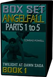 Angelfall: Box Set - Parts 1 to 5 (Twilight at Dawn Saga, Book 1)