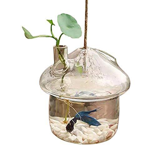 Deko-Glas - Pilzförmiger Hängepflanzer aus Glas für Aquarien, Terrarienbehälter, Home Garden Decor - Rosen rustikal Pack unter Fischen, rosa Ringe hell, antikes Sortiment getaucht Boch Rose Garden