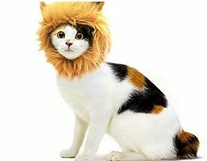 Bigood Perruque du Lion pour Chat Chaton Chapeau Crinière Déguisement Hiver
