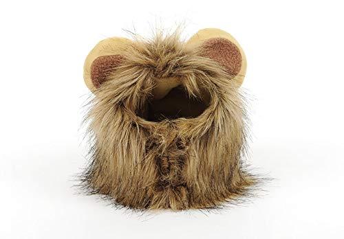 HONGSHUO Katzenlöwekopfbedeckung dekorativer Huthund Teddybär lustiger lustiger Haustierperückenschmuck der netten Form (M) (Teddybär Lustig)