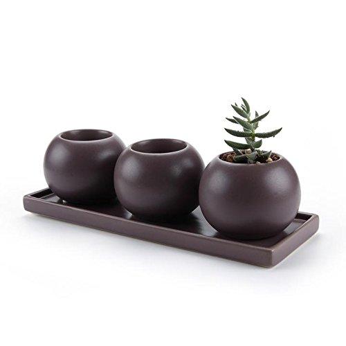 t4u-cameo-doppio-strato-della-cavita-di-disegno-ceramica-vaso-di-fiori-pianta-succulente-cactus-vaso