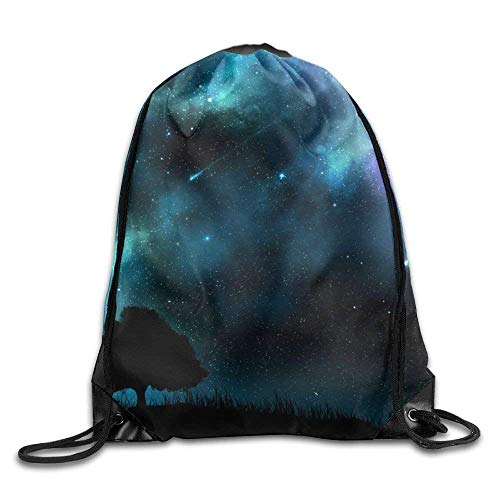 HLKPE Drawstring Backpack Bags for Men Women Kids Casual Gym Bag - (Meteor Shower In Grassland)