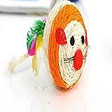 AILILOVEBEAUTY la Testa di Topo Badminton Colore 6cm sisal,Orange